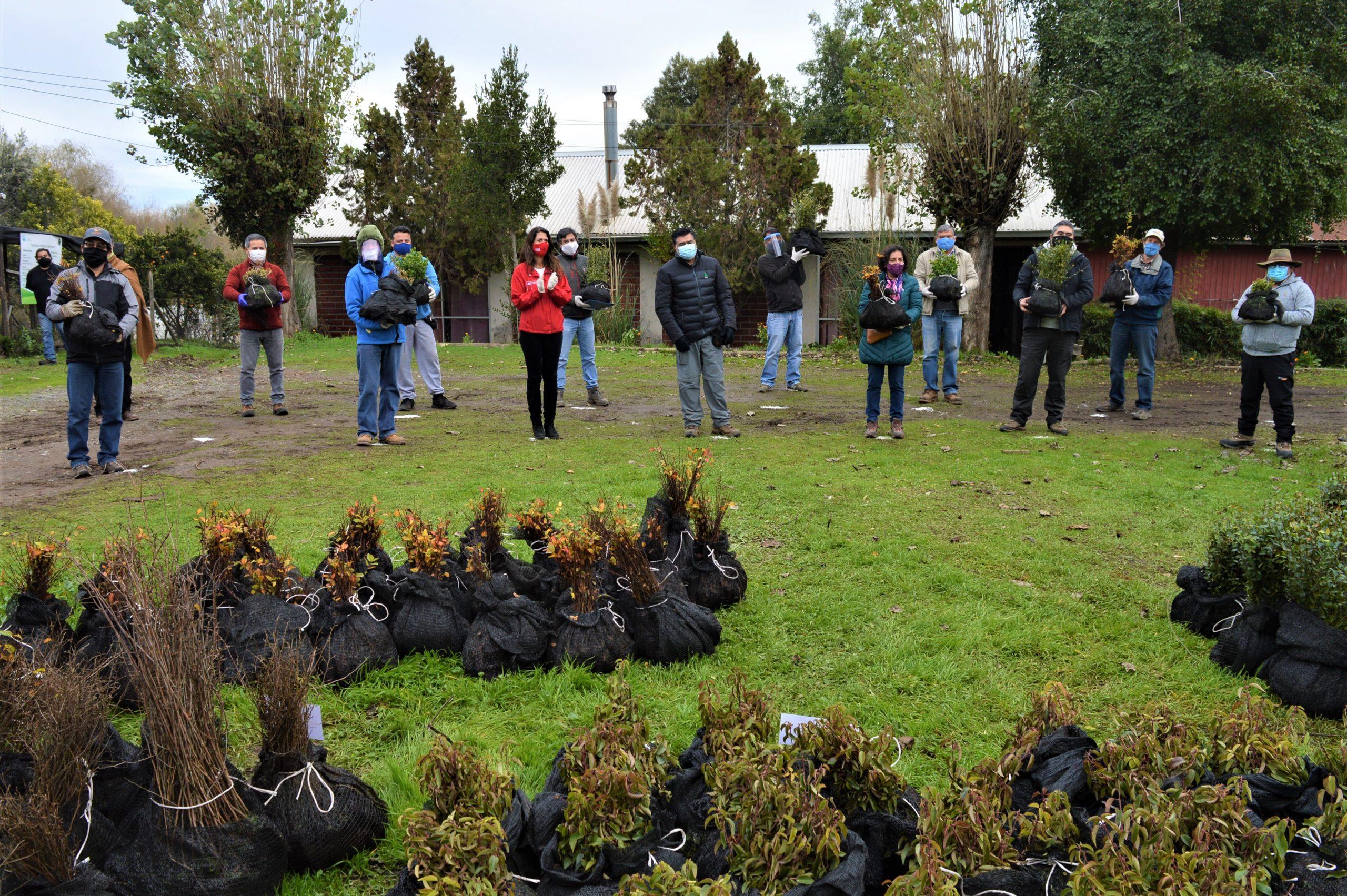 donación de árboles nativos a integrantes de la mesa apicola del maule